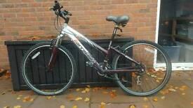Bike by Barracuda, women's £100
