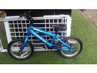 Kids Ridgeback MX14 bike blue boys girls