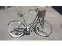 Pashley and dutch ladies bikes