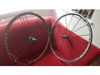 Campagnolo Shamal Ultra wheelset, Shimano / sram hub