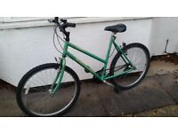 Raleigh Quality Hand Built Mountain Bike - Great Everyday Commuter