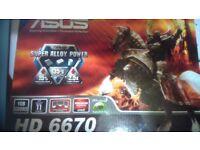 Asus Radeon HD 6670 1GB
