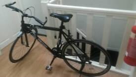 Teman sport road bike