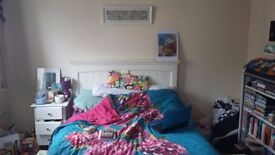 Large double room for rent in lovely shared house near Temple Cowley.