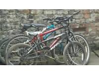 Bikes x3