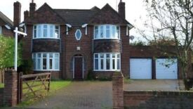 Very impressive 5-6 bedroom, perfectly situated large detached house for rent in Earley £2750 pcm