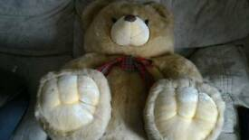 Hugh teddy