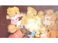 Dolls and teddy's