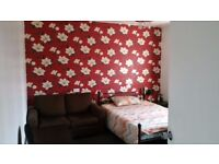 Large Double room with Sofa for GBP 500 pm only available for Couple(NON smoker)