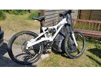 Cannondale Perp Downhill/Freeride specific bike (not trek/specialised)