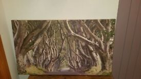 DARK HEDGES CANVAS