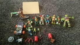 Ninga Turtles toys