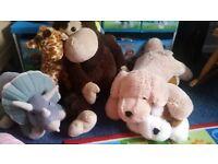 large teddy bundle