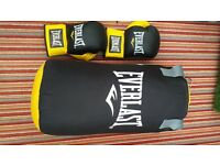 NEW! punch bag, gloves and bracket