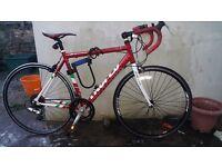 Trofeo Mens Road Bike