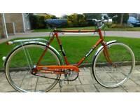 Raleigh Esquire bike