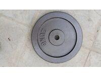 """2 x 20 kg 1"""" standard cast iron weight plates."""