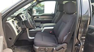 2014 Ford F-150 FX4 4X4 | One Owner | Box Liner Kitchener / Waterloo Kitchener Area image 10
