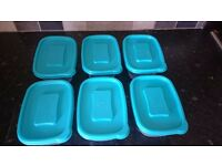 6 Food Containers Microwave And Dishwasher Safe, food boxes 1 liter