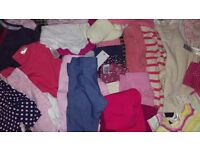 Large bundle 0-6 month baby girl clothes