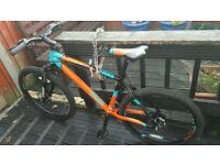 Calibre Push Bike