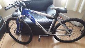 Reebok Limit Mountain Bike