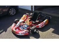 Kart - Birell, IAME Leopard 125cc, watercoooled electric start (not rotax, X30)