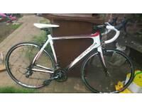 Carbon road bike bicycle cheap