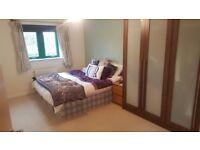 2 Bedroom -Fantastic Large Modern Flat in popular building, multiple Tube & Transport links nearby