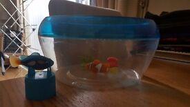 Robofish bowl with 2 robofish
