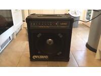 Carlsbro hornet 45 lead amplifier