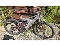 Barracuda adults bike in great condition!