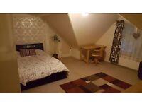 Huge room to rent. Central Eastbourne location