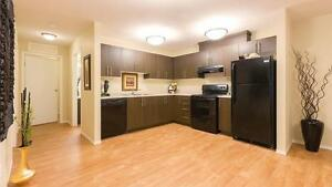 Pet friendly 2BR apartment w/insuite laundry (North West) Regina Regina Area image 4