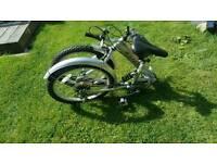 Safari fold up bike