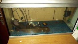 2.5 foot fish tank