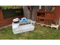 Dwarf lop eared male rabbit complete with outside hutch..large indoor cage..carry case ..