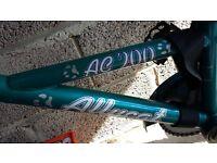 Allycat tag-along-bike