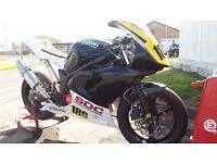 suzuki sv650 minitwin racebike