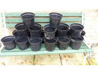 gardening seed pots