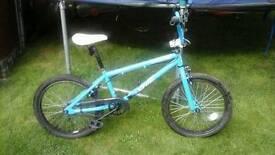 X rated Spine bmx bike