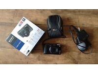 Sony Cyber-shot DSC-HX20V Digital Camera with Lowepro Case and 8GB SD Card