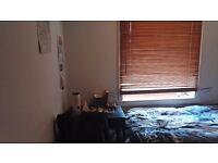 Single room within friendly 3 bedroom flat, Granton near Telford College- £300pcm