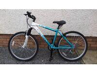 APOLLO Twilight Ladies/girls Mountain bike
