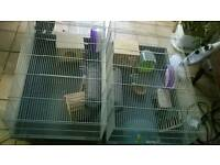 2 x rat/dagu/large hamster cages with accessories