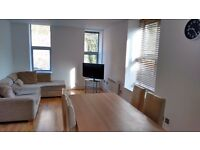 LIGHT, BRIGHT LUXURY 2 DOUBLE BED FLAT, OFF-STREET PARKING, HOTWELLS RD, 2 MINS (FOOT) CITY HALL