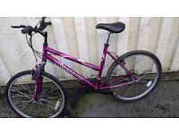 REFLEX OBSESSION MOUNTAIN BICYCLE WITH FRONT SUSPENSION 21 SPEED 26 INCH WHEEL AVAILABLE FOR SALE
