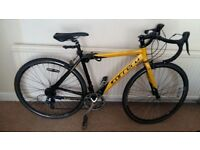 Bargain- Carrera bike
