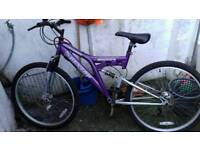 Two adult bikes for sale one female and one mixt.