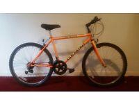 Outrider Gemini Men's Mountain Bike